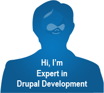 Drupal developer job description
