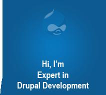 Drupal developer job description