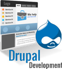 Web Peppers Drupal Theme Development