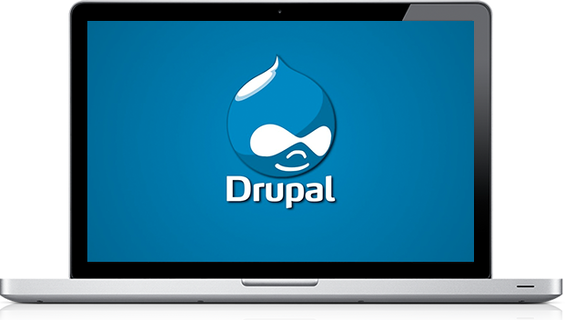 Website Support Drupal