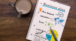 Web development Business Plan. How to make it and the main questions.